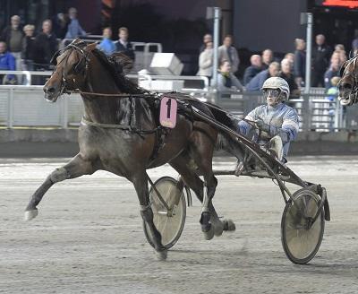 Foto Leif Norberg/ALN Solvalla 150729